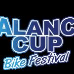 logo-av-cup-festival-1080x675